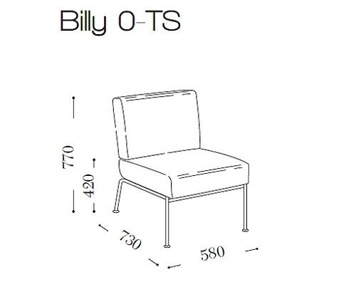 Билли (Billy 0 TS)