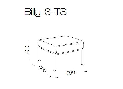 Билли (Billy 3 TS)